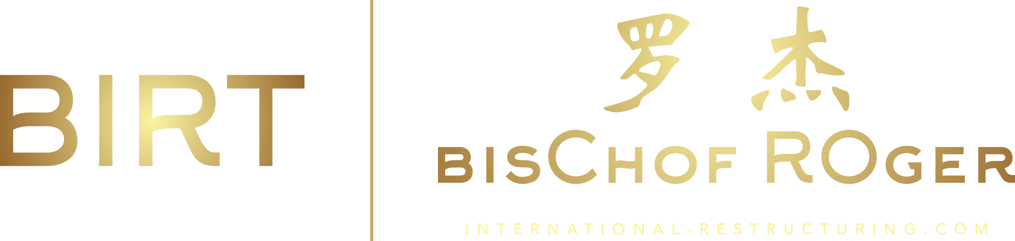 BIRT International Restructuring Logo